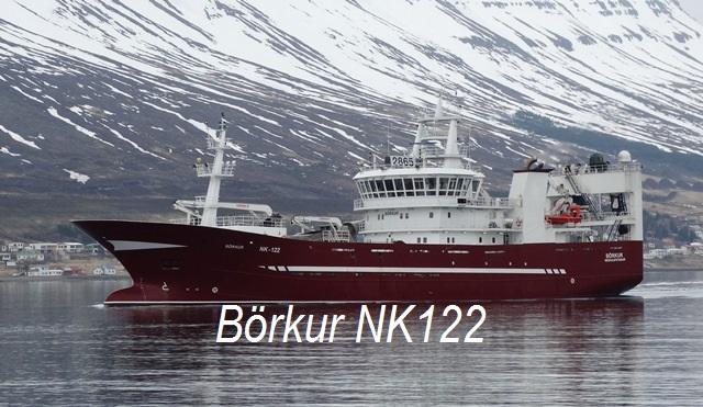 BrkurNK11