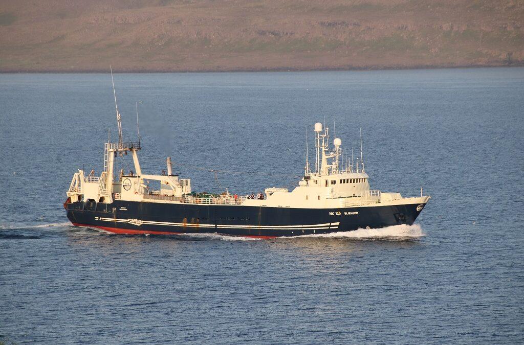 Blængur með 800 tonn úr Barentshafinu
